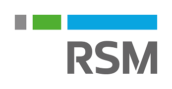 RSM - Technology and Management Consulting